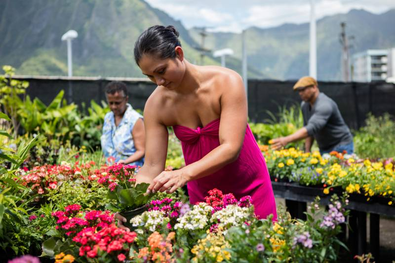 koolau-farmers-customers-in-outside-garden